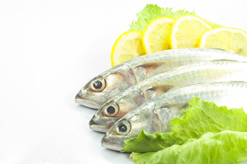 Mackerel with Lemon