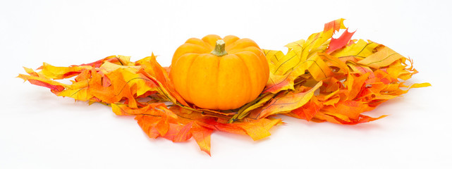 Colorful fall leaves and pumpkins