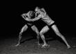 Model wrestling