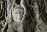 Buddha head entangled by fig tree, Ayutthaya, Thailand