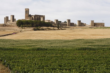 Artajona - Navarra