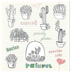 Hurting cactus love.