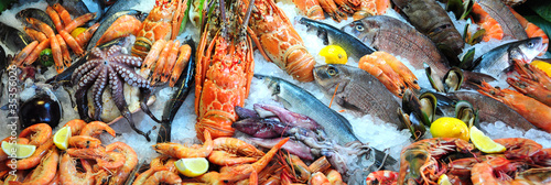 Plexiglas Schaaldieren Fresh seafood