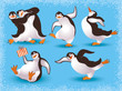 Funny dancing penguins