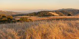 Panorama of chaparral landscape at sunset in California.
