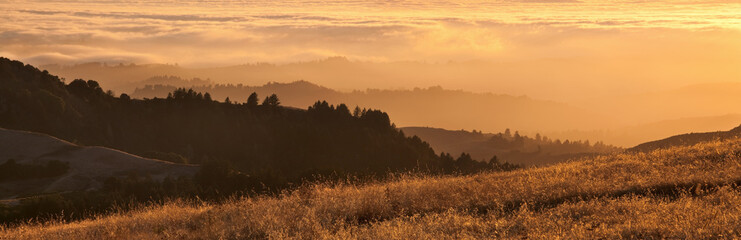 Panorama of California Bay Area fog at sunset.
