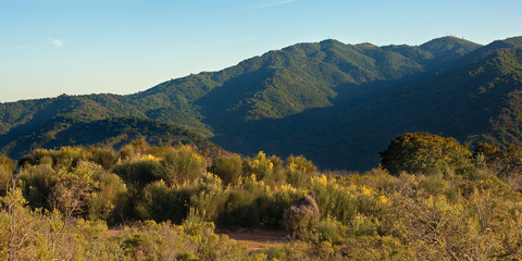 Panorama of a typical Central California sunset over wildflowers