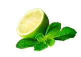Mint and lime isolated