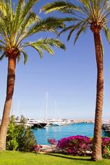 Calvia Puerto Portals Nous bougainvilleas garden in Mallorca