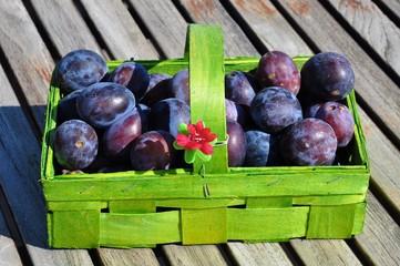Zwetschgen, Obst, Herbst
