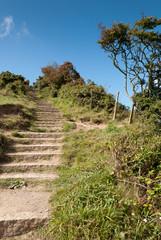 scalinata sulla collina di Port Isaac in cornovaglia