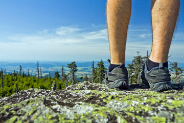Hiker on summit in summer landscape