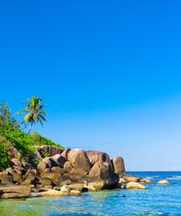 Landscape Shore Scene