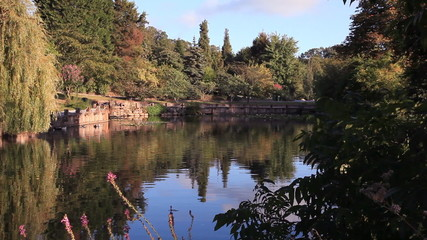 beautiful nature park