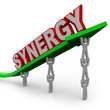 Synergy - Teamwork People Partner for Combined Strength