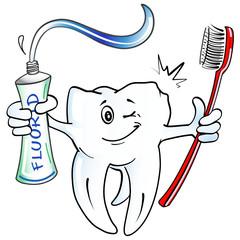 gesunder Backenzahn, Zahnbürste + Fluorid