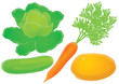 cabbage, cucumber, carrot, potato