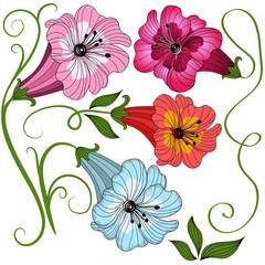 Set isolated flowers
