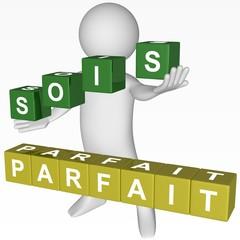 Cubes - 441 - SOIS PARFAIT