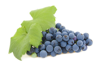 isolated cluster of grapes