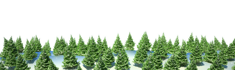 Firtree forest landscape isolated