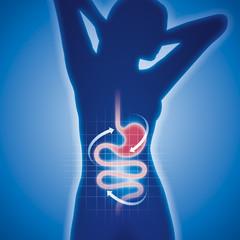 Silhouette junger Frau mit Magen-Darm-Trakt