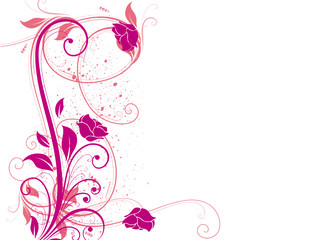 arabesques roses