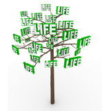 Tree of Life - Natural Growth and Progress in Modern Living poster