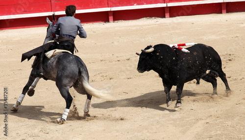 Staande foto Stierenvechten corrida a cheval