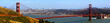 golden gate bridge und skyline