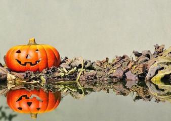 Calabaza de Halloween en el jardin.