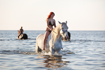 Swimming with horse