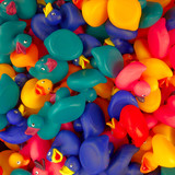 rubber toy ducks