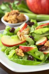 Waldorf Salad made of lettuce, apple, celery, walnuts, raisins