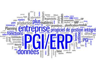 Progiciel de gestion intégré PGI ERP