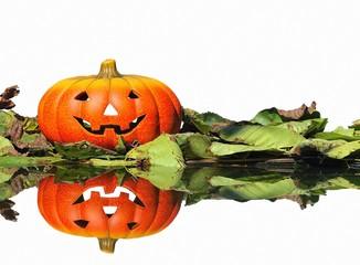 Calabaza de Halloween sobre fondo blanco.