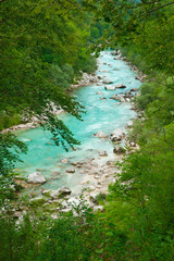Beautiful turquoise mountain river in forest frame. Soca