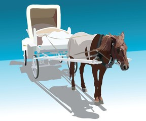 image of horse harnessed in a white wagon