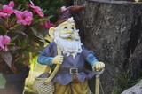 Garden - Gnome