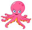 Octopus - 35544085