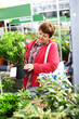 Senior woman buying plants