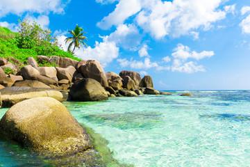 Beauty Summer Beach