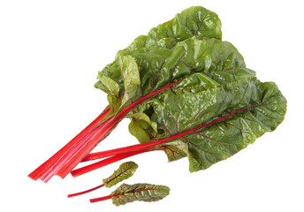 Red chard leaves in water drops