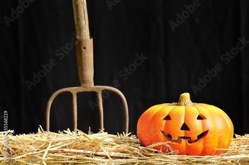 Halloween en la granja.