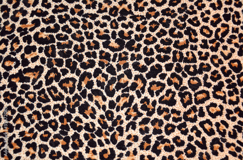 abstract texture of leopard fur (skin) - 35572085