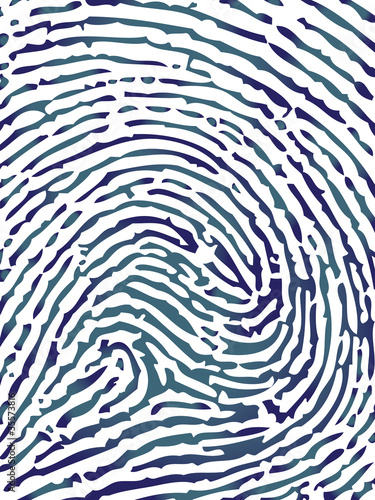 Fingerprint close-up vector