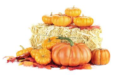 Pumpkins and Hay Bale