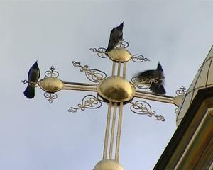 вороны на кресте