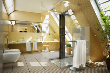 Bathroom designed in the mansarde