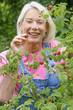 Seniors - Détente et jardinage